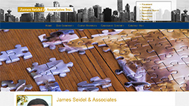 James Seidel & Associates - job recruiting and placement service